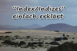 Was ist ein index? Was sind Indizes?