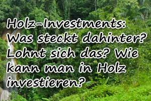 Grüne Geldanlage Holz: Infos